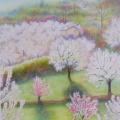 Verger fleuri, 30 x 40 cm<br />Terre de Provence au printemps, <br> Les cerisiers se parent comme des mariées - <br> Insolents, les  pêchers s'affirment en rose vif.