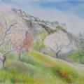 Cerisiers au printemps, 40 x 30 cm<br />Au pied de la montagne encore austère, <br> Eclate la symphonie des blancs colorés - <br> Les cerisiers dansent entre jacinthes et jonquilles.