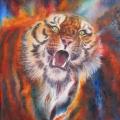 Tigre rugissant, 36 x 50 cm<br />