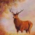 Le roi de la forêt, 27 x 37 cm<br />