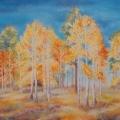 Bois de bouleaux en automne, 51 x 36 cm<br />