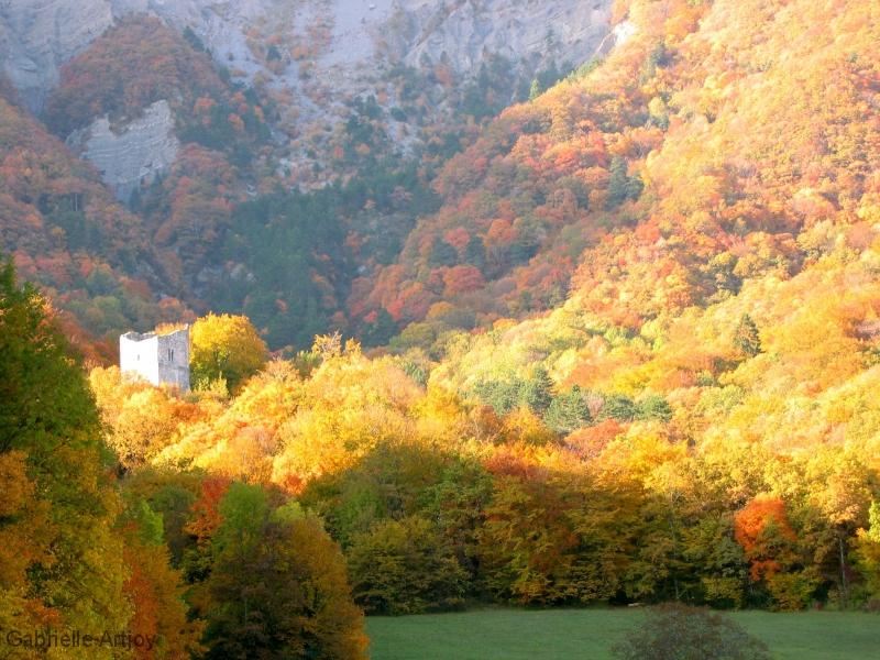 tour d'Arces et couleurs d'automne