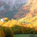 tour d'Arces et couleurs d'automne<br />