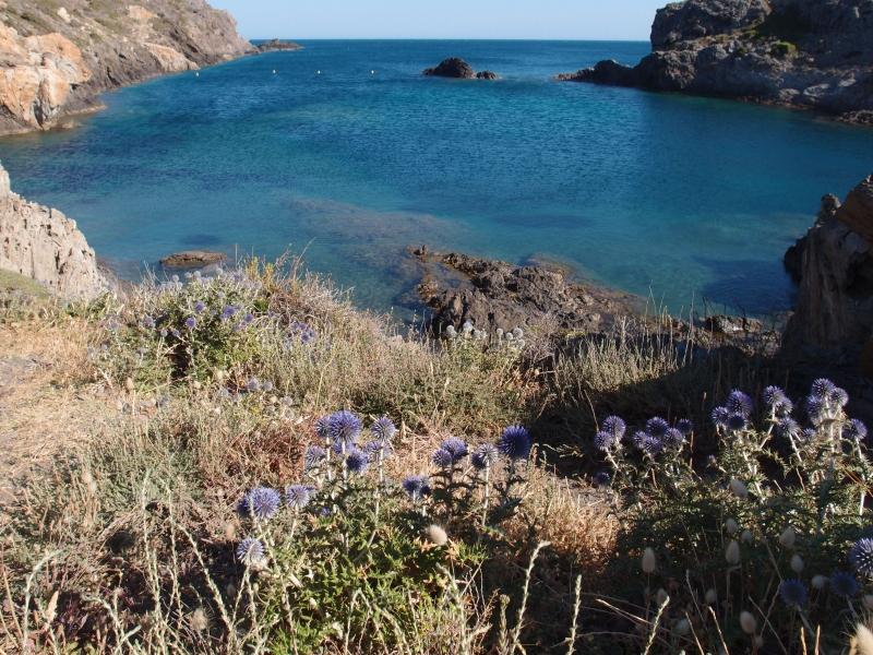 Calanque vers Cap Creus, Espagne