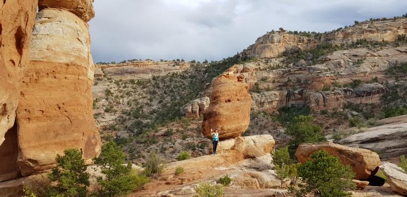 Colorado NM