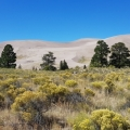 Great Sand Dunes NP<br />