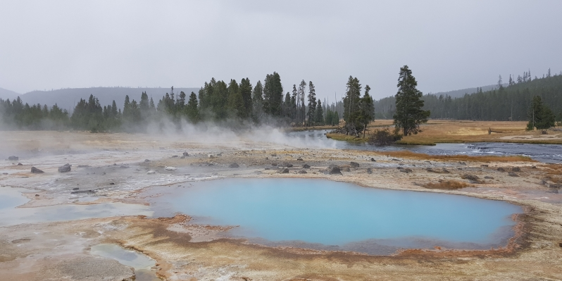 Yellowstone NP