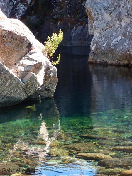 Eau émeraude et rochers clairs