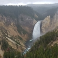Yellowstone NP<br />