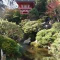 Japanese Tea Garden, San Francisco<br />
